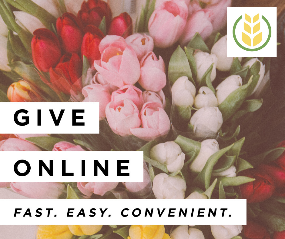 Spring Online giving